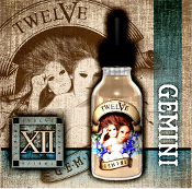 Twelve 20ml Gemini e liquid
